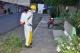 COVID-19: Prefeitura de Pilões higieniza ruas da cidade