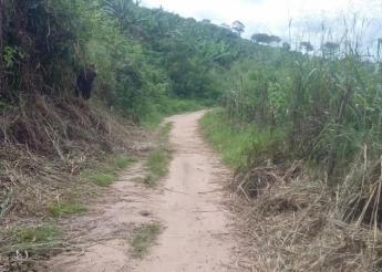 Prefeitura de Pilões deu início ao roço do mato das estradas da zona rural do município.